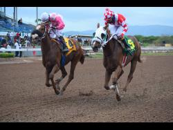 Further And Beyond (right), ridden by Dane Nelson, and Miniature Man, ridden by Dick Cardenas, finish in a spectacular dead heat in the Kingston Trophy at Caymanas Park on Saturday, May 8.